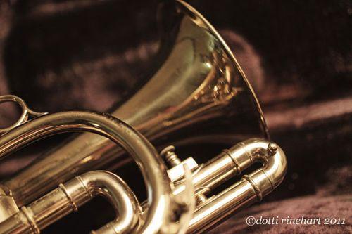Sepia-cornet-copy