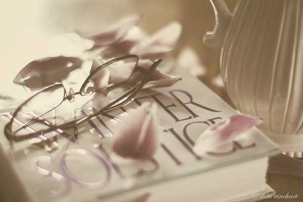 Tulipsandbook