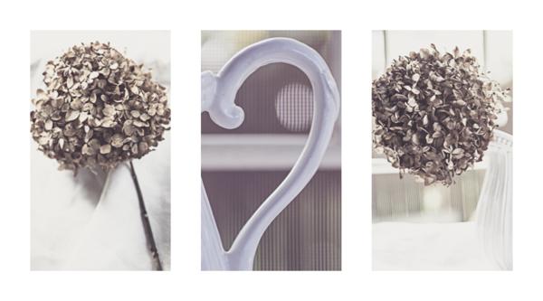 Hydrangea-triptych