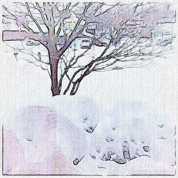 Snowday-four