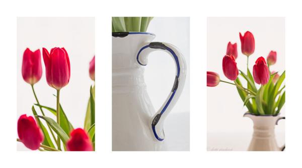 Tulip-trip
