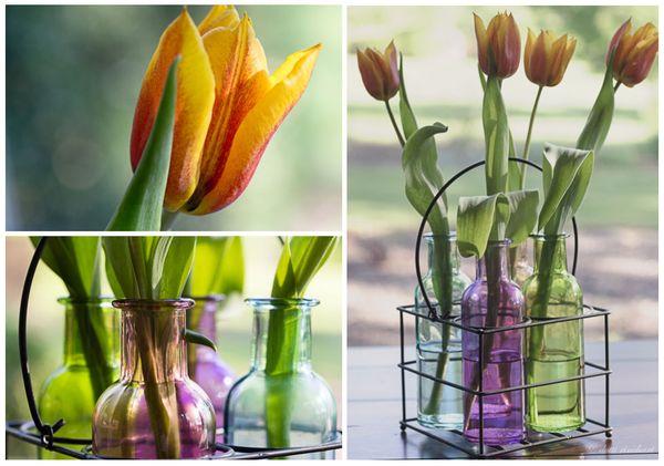 Bottles.tulips.web