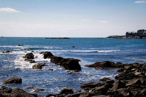 Shoreline-newport